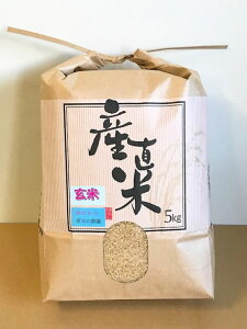 青天の霹靂 玄米5kg (令和1年産)
