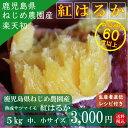 【送料無料】ねじめ農園 紅はるか5kg S・Mサイズさつまいも サツマイモ さつま芋 薩摩芋 べにはるか 国産 産地直送 産直 鹿児島 鹿児…