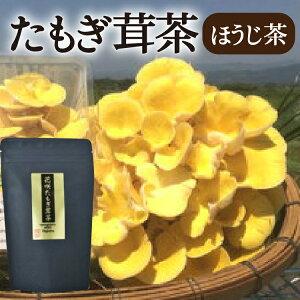 【無農薬】【送料無料】熊本県産あさぎり町「花咲たもぎ茸茶」ティーバッグ(ほうじ茶) たもぎ茸