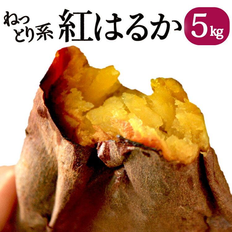 ネットリ系【予約】鹿児島県産 べにはるか 5kg【送料無料】ねっとり さつまいも 紅はるか まるでスイーツ 焼き芋やお菓子作りにもってこい!