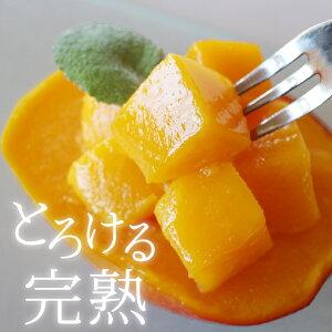 冷凍 マンゴー 1kg 鹿児島県産 送料無料