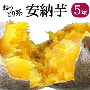 鹿児島県産 熟成土付きさつまいも 安納芋 5kg 送料無料 しっとり サツマイモ  焼き芋