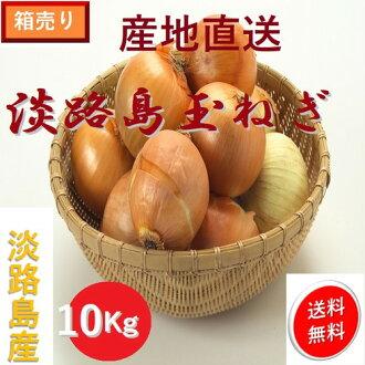 Fresh vegetables onion onion mixed size 10 kg/ Hyogo Awajishima product