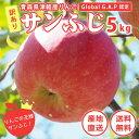 Wakeari fuji5