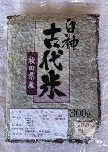 白神古代米(300g)黒 東雲農園