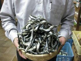 【送料無料】いわし煮干(にぼし)【千葉県 九十九里浜産】 1kg、2480円