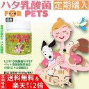 【定期購入】ハタ乳酸菌 FOR PETS ペット用 60g(約2ヶ月分 計量スプーン付)【全国 送料無料】【楽天ポイント2倍】【クーポンは利用できません】犬 猫 動物用 腸内環境 口臭 被毛向上 ペッ