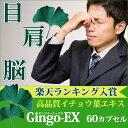 Gingo-ex60cp