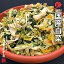 国産乾燥白菜 500g 国産乾燥野菜シリーズ はくさい エアドライ 低温熱風乾燥製法 九州産 熊本県産 みそ汁 フリーズド…