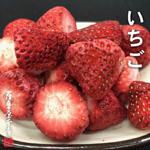 国産乾燥果実シリーズ 乾燥いちご 18g 苺 国産原料100% ニューフリーズドライ製法 特許取得 FD AD ドライ エアドライ ドライフルーツ 果物