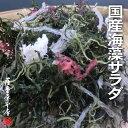 国産海藻サラダ7種ミックス 100g (国産原料100%・乾燥タイプ) 〜くきわかめ・カットわかめ・昆布・糸寒天・赤のり・白とさか・ふのり〜