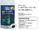【SALE】サティスα しっかりブルーベリーHi 90粒 ドライアイ 眼精疲労 目の健康に 紫外線