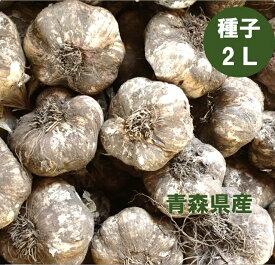 青森県産 種子用 にんにく 2Lサイズ 1kg