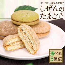 【澤井珈琲】ふんわりサクサク♪ しぜんのたまご 1個 ※冷凍便同梱不可