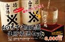 父の日 日本酒 おうちでこぼれ酒生貯蔵セット720ml×2本セットオリジナルグラス&塗り枡 送料無料
