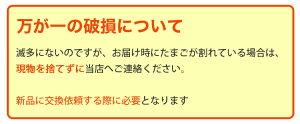 【27日9:59までポイント2倍★】馬路村産ゆず皮使用ゆずたま6個入り5パックヤマサキ農場TVでも話題!