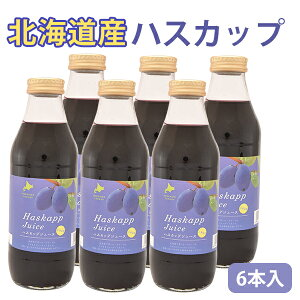 北海道産 ハスカップジュース 500ml 6本 バイオアグリたかす お中元 ギフト のし対応可【父の日6月20までにお届け不可】
