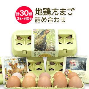 地鶏たまご 3種詰め合わせ(にいがた地鶏・名古屋コーチン・薬師軍鶏) 各10個・計30個セット 五頭山麓ひよころ鶏園【のし対応可】