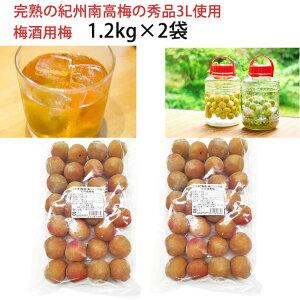 【24日9:59までポイント2倍★】梅酒用梅 1.2kg×2袋 完熟の紀州南高梅の秀品3Lサイズ使用 熊野の里