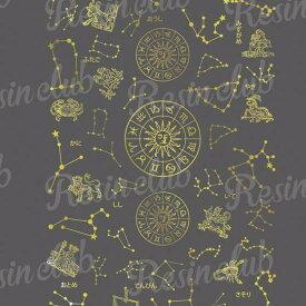 Resin club(レジンクラブ) 【レジン 封入 シール】埋め込みレジンシール 12星座 ゴールド 1枚 金 星 星図 ホロスコープ 夜空 ホシ シンボル イラスト ステッカー