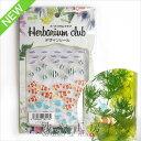Harbarium club(ハーバリウムクラブ) ハーバリウムシール 熱帯魚 88×150mm 魚 1枚 レジンクラブ シール ハーバリウム…