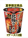 [1ケース] 日清食品 蒙古タンメン中本 北極ラーメン 111g×12個