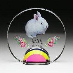 ペットメモリアルお位牌カラー印刷クリスタル犬猫ウサギ仏具