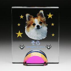 【ペット位牌クリスタル仏壇可愛い思い出犬猫ウサギ家族メモリアルグッズ】