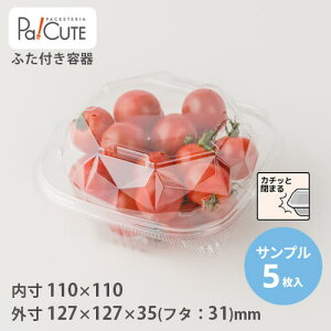 【サンプル商品:ACP−253(穴あき)】青果 容器 業務用 ミニトマト トマト 青果物 野菜 果物 青果用 フルーツ 少量 透明 出荷 出荷用パック プラスチック容器 食品包材 とまと みにとまと ケー