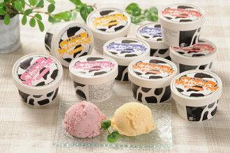 홋카이도 신선한 우유를 사용한 홋카이도 맛 듬뿍 도카치 백색 목장 손으로 아이스 12 개 들이