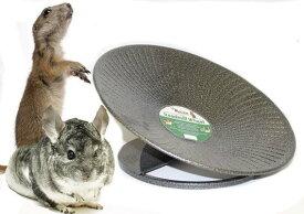 『 トレッドミルホイール 大 14インチ(約35.56cm) 』 エキゾチックヌートリション 動物用ホイール