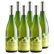 サンクゼールナイアガラブラン2017北海道産ナイアガラ100%甘口白ワイン750ml