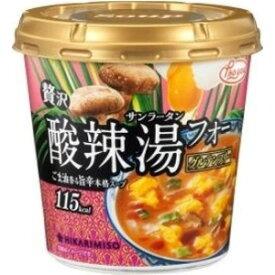 【訳あり】 賞味期限:2019年7月29日 ひかり味噌 Pho you 贅沢 酸辣湯フォー (1食) インスタントカップスープ
