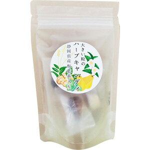 大きい粒のハーブキャンディ 静岡県産 板藍茶入り (45g) のど飴 菓子