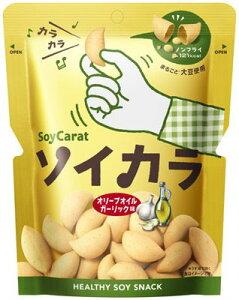 大塚 ソイカラ オリーブオイルガーリック味 (27g) お菓子 スナック菓子