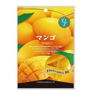 【訳あり】 賞味期限:2020年10月25日 共立 マンゴ (60g) ドライフルーツ
