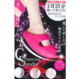 フィットネスサンダル レディース用 フリーサイズ カラー:ピンク (1足) ダイエット バランスサンダル