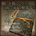 Treasureviking 01