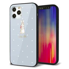 iPhone12 Pro ケース カバー スマホケース 背面 ガラス TPU ガラプリ 【Lady Rabbit ブルーグレイ ガラプリhp】 メール便送料無料