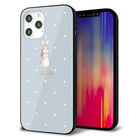 iPhone12 Pro Max ケース カバー スマホケース 背面 ガラス TPU ガラプリ 【Lady Rabbit ブルーグレイ ガラプリhp】 メール便送料無料