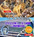 2,000円OFFクーポンあり みるくがき 30個(1.8〜2.6kg) 【予約販売】【送料無料】福岡県 糸島産 初物 牡蠣 カキ 殻付…