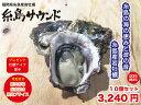 糸島 岩牡蠣 糸島サウンドSサイズ 10個セット