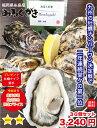 糸島 牡蠣 みるくがき 30個セット