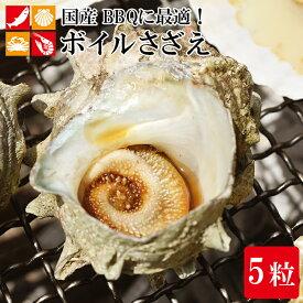 BBQ 国産 つぼ焼き用 サザエ 5個 ボイル さざえ 栄螺 バーベキュー 海鮮 貝 バーベキューセット 酒の肴 おつまみ アウトドア