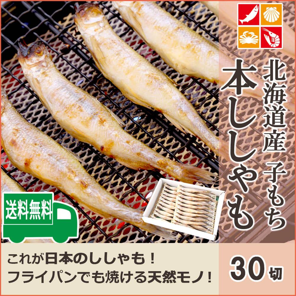ししゃも 国産 北海道産 30尾 子持ち 天然 シシャモ 魚 ギフト 御歳暮 本ししゃも 送料無料