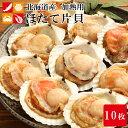 ホタテ 殻付き 片貝 10枚 北海道産 ほたて 貝 殻付 ひも 貝柱 帆立 BBQ バーベキューセット ギフト