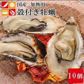 国産 殻付き 牡蠣 10個 カキ かき 貝 シーフード 冷凍 バーベキュー 国産 BBQ 海鮮 簡単調理 アウトドア お祝い
