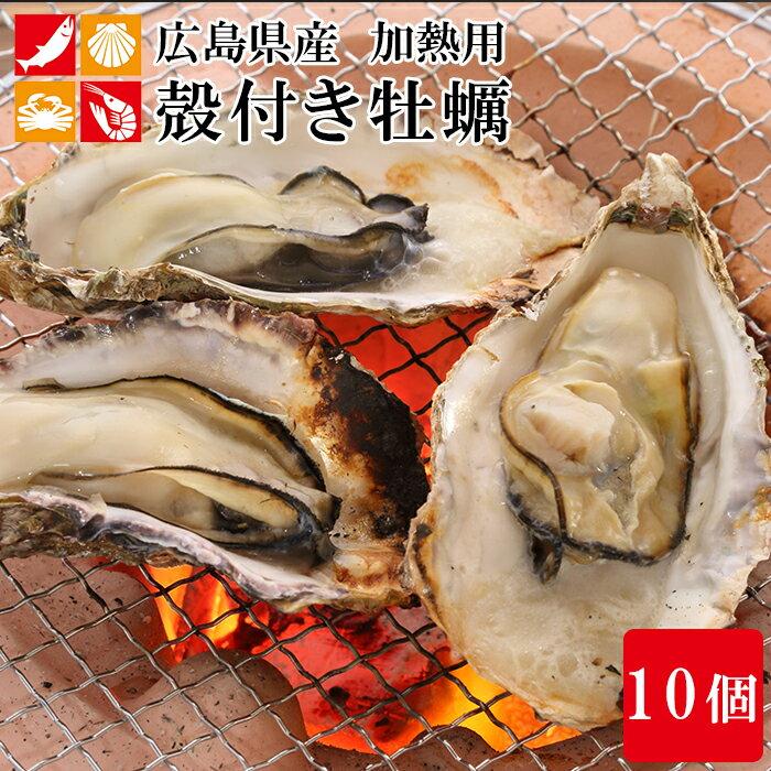 広島産 殻付き 牡蠣 10個 カキ かき 貝 シーフード 冷凍 バーベキュー 国産 BBQ 海鮮 簡単調理
