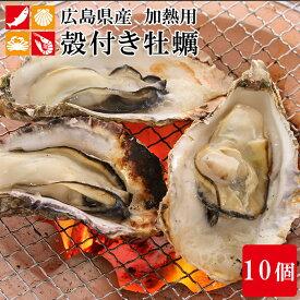 広島産 殻付き 牡蠣 10個 カキ かき 貝 シーフード 冷凍 バーベキュー 国産 BBQ 海鮮 簡単調理 アウトドア 敬老の日