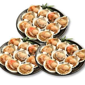 海鮮 バーベキューセット 北海道産 ホタテ 殻付き 片貝 ( 10枚入×3個セット ) [ 送料無料 ] [ ほたて 貝 殻付 ひも 貝柱 帆立 BBQ バーベキュー 海鮮鍋 ギフト ]